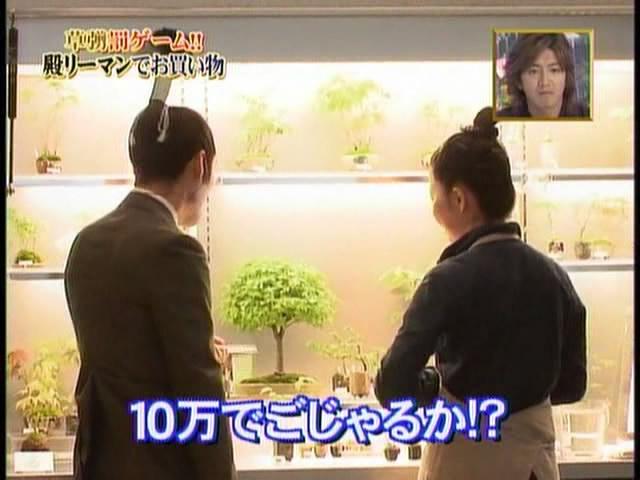 12-bonsai.jpg